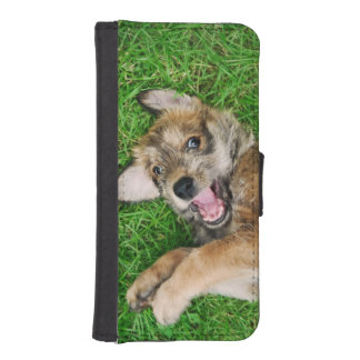 Laughing Dog Berger Picard Cute Puppy Protect iPhone SE/5/5s Wallet Case