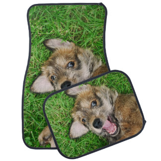 Laughing Dog Berger Picard Puppy Funny floor-mats Car Mat