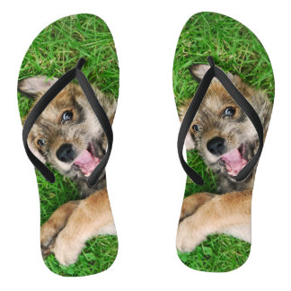 Laughing Dog Berger Picard Puppy Funny Photo - Flip Flops