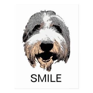 Laughing Dog SMILE Postcard