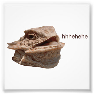 Laughing Iguana HeHe Lizard Photo Print