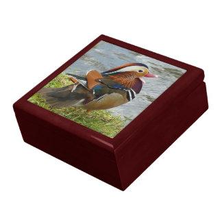 Laughing Mandarin duck Large Square Gift Box