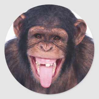 Laughing Monkey Classic Round Sticker