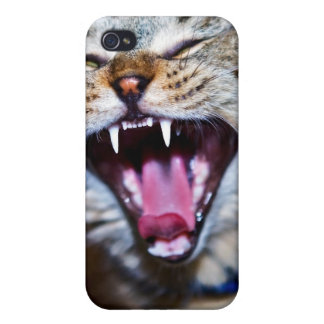 Laughing or Screaming Cat Case For iPhone 4