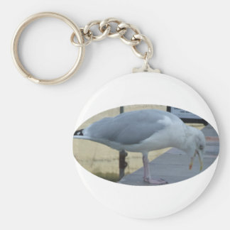 Laughing Seagull Basic Round Button Key Ring