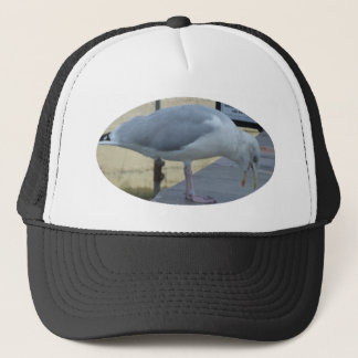 Laughing Seagull Trucker Hat