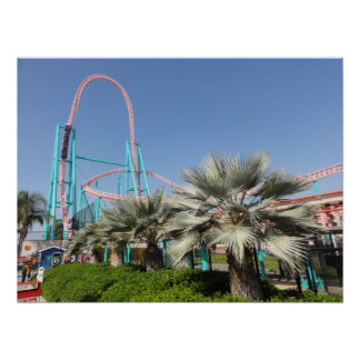 Launched Roller Coaster Poster