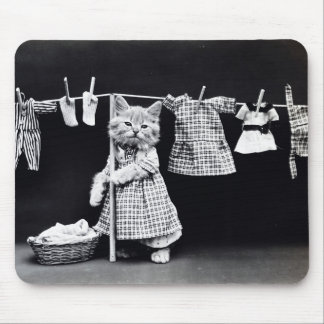 Laundry Day Kitty Mouse Mat