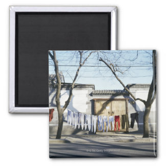 Laundry Drying on Clotheslines Magnet