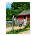 Laundry Hanging on Line Post Cards