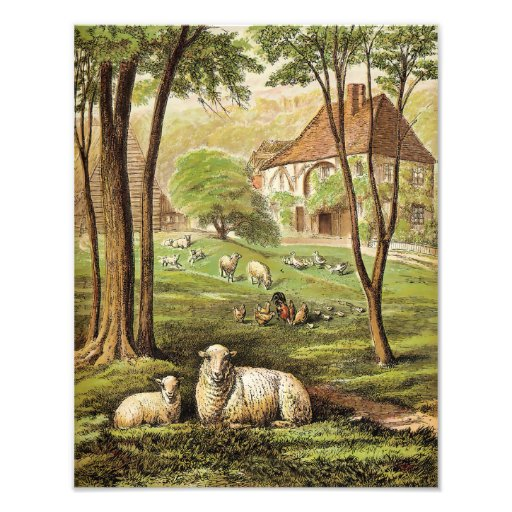 """Laura Valentine """"Country Cottage""""  Sheep Chickens Art Photo"""