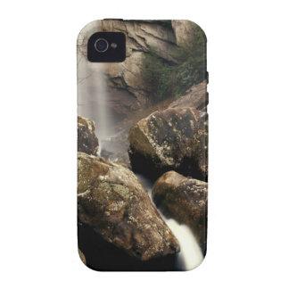 Laurel Falls Case-Mate iPhone 4 Covers