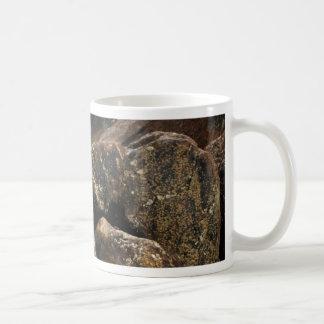 Laurel Falls Mug