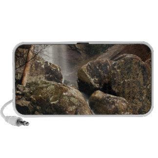 Laurel Falls Laptop Speaker