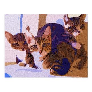 Laurie, Larry & Louie Postcard