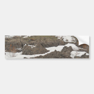 Lava / Snow in Idaho Bumper Sticker