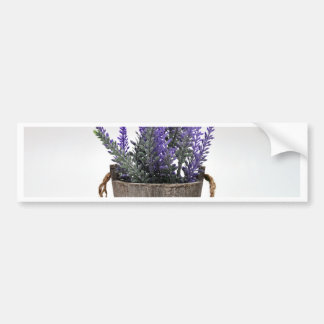 lavander bumper sticker
