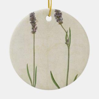 Lavandula officinalis (Old English Lavender), c.15 Christmas Ornament