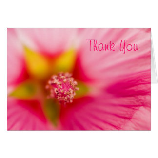 Lavatera, Thank You Card