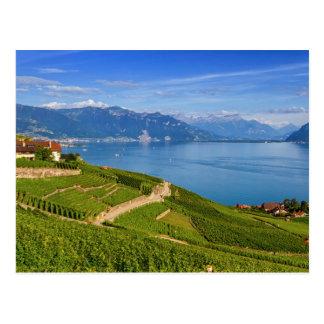 Lavaux region, Vaud, HDR Postcard
