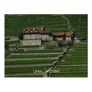 Lavaux, Switzerland Postcard
