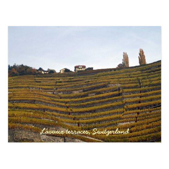 Lavaux terraces postcard