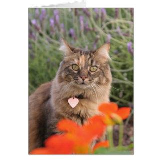 Lavendar, Nasturtium,  and a Tortoiseshell Cat Card