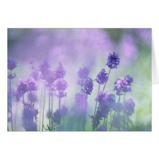 Lavender 2 card