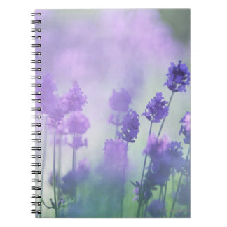 Lavender 2 notebook