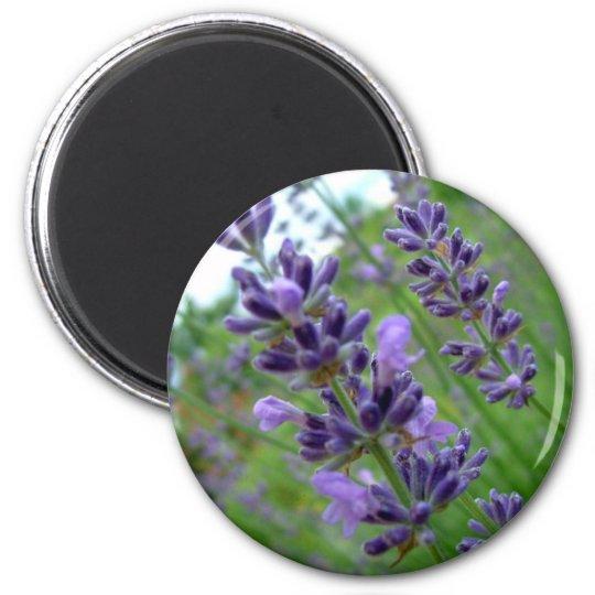 Lavender 6 Cm Round Magnet