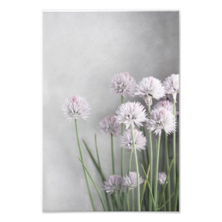 Lavender And Green Chives On Soft Gray Photo