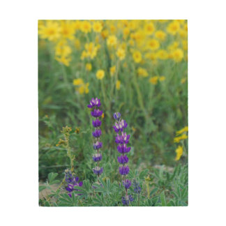 Lavender and Yellow Sunflower Wood Print