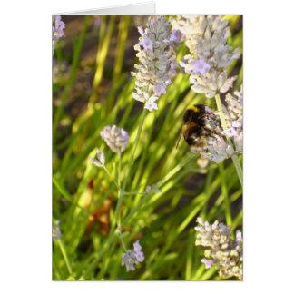 'Lavender Bee' Notecard