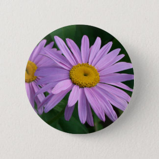 Lavender Colored Painted Daisies 6 Cm Round Badge