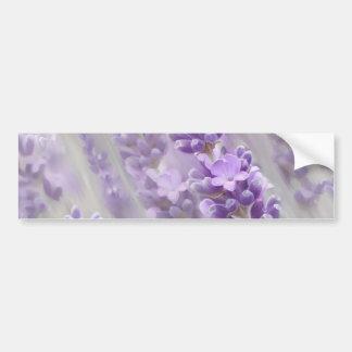 Lavender dreams. bumper sticker