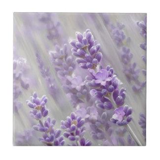 Lavender dreams. small square tile