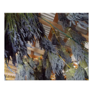 Lavender Drying Poster