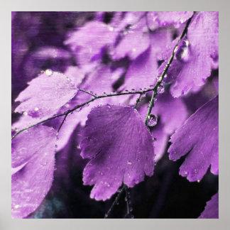 Lavender Fern Poster Print