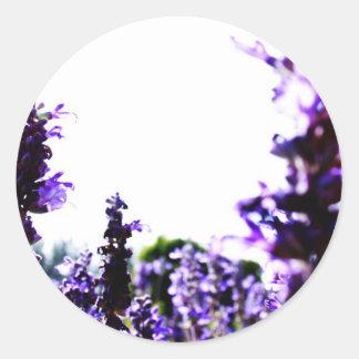 Lavender Field Classic Round Sticker