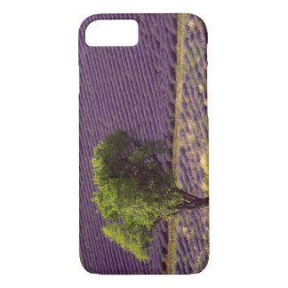 Lavender field in High Provence, France iPhone 8/7 Case