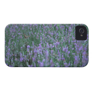 Lavender Field iPhone 4 Case-Mate Case
