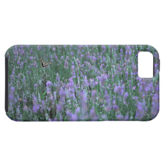 Lavender Field iPhone 5 Cover