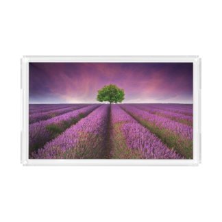 Lavender Field Landscape Summer Sunset Acrylic Tray