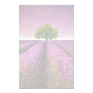 Lavender Field Landscape Summer Sunset Customized Stationery