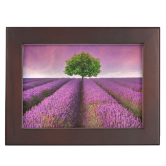 Lavender Field Landscape Summer Sunset Keepsake Box