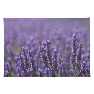 Lavender field Placemats