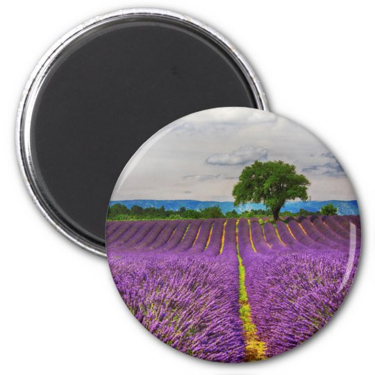 Lavender Field scenic, France 6 Cm Round Magnet