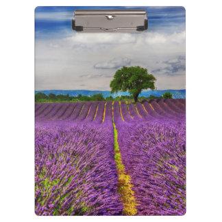 Lavender Field scenic, France Clipboard