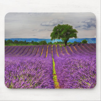 Lavender Field scenic, France Mouse Mat
