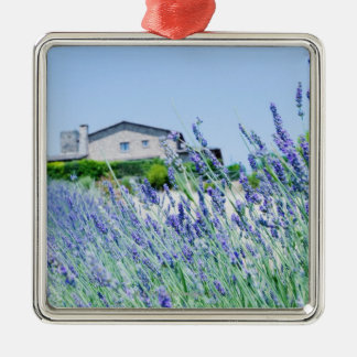 Lavender field with a building in the christmas ornament